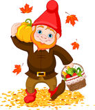 Garden Gnome with harvest Royalty Free Stock Images