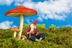 Garden gnome playing music Stock Photo