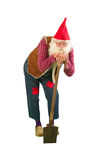 Garden gnome with shovel Royalty Free Stock Photo