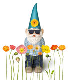 Garden Gnome Spring Flowers Summer. A garden gnome in front of a row of poppy flowers on a white background Royalty Free Stock Photos