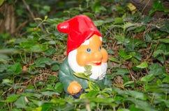 Garden gnome standing in ivy Stock Photos