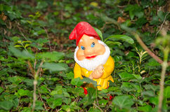 Garden gnome standing in ivy Royalty Free Stock Images