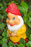 Garden gnome standing in ivy Royalty Free Stock Photos