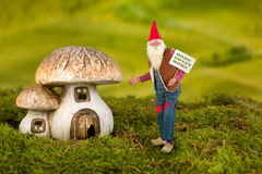 Garden gnome with toadstool Royalty Free Stock Photos