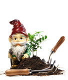 Garden gnome and tools for spring planting Stock Photos