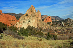 Garden of the Gods with deer Royalty Free Stock Images