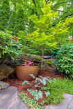 Garden with Gold Container Pot in Landscaped Yard Royalty Free Stock Images