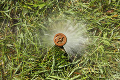 Garden grass irrigation Royalty Free Stock Images