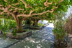 Garden of the Church of the Apostles in Galilee, Israel. Garden of the Greek Orthodox Church of the Holy Apostles, near the shore of the Sea of Galilee in Israel Stock Images