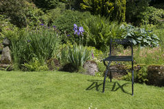 Garden with green metal chair as decoration