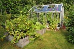 Garden greenhouse Stock Image