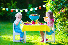 Garden grill party for kids Stock Photography
