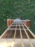 Garden guitar with heavenly strings. Garden guitar with heavenly. Garden guitar strings. Grass, strings, grassy stock photography