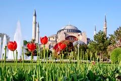 Garden of Hagia Sophia. In spring. Istanbul, Turkey Royalty Free Stock Photography