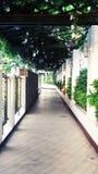 Garden hallway Stock Photography