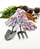 Garden hand tools and gloves Royalty Free Stock Image