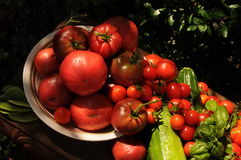 Garden Harvest Stock Images