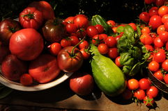 Garden harvest Stock Photography