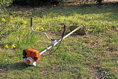 Garden hedge and grass strimmer Stock Images