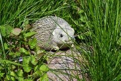 Garden hedgehog sculpture stone hedgehog in the grass Stock Photo