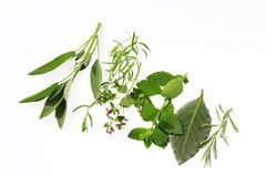 Garden herbs Royalty Free Stock Images