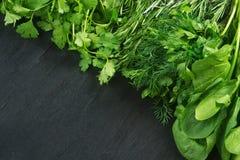 Garden herbs Royalty Free Stock Photo
