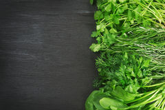 Garden herbs Stock Image