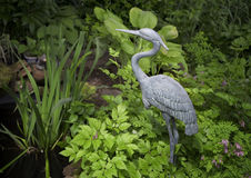 Garden Heron Royalty Free Stock Photos