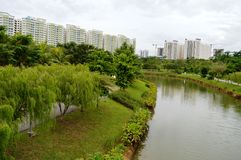 Garden and High Rise Apartments Royalty Free Stock Photo