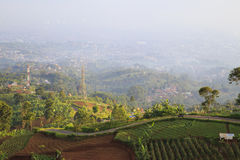 Garden Hill. Bandung city from hill with garden foreground stock photos