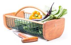 Garden Hod of Fresh Vegetables Royalty Free Stock Photos