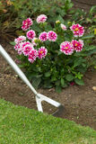 Garden Hoe Royalty Free Stock Images