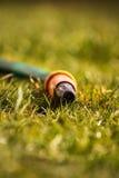 Garden hose. Placed on grass stock photos