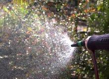 Garden hose Stock Image