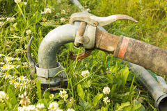 A garden hose Royalty Free Stock Images