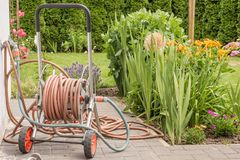 Garden hose on a hose cart in the home garden royalty free stock photography