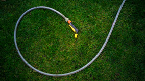 Garden hose lying on green grass at garden Royalty Free Stock Photos