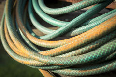 Garden Hose. Old garden hose curled up in a pile and stained by years in the weather stock photo
