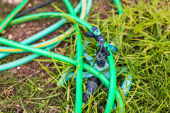 Garden hose-pipe outdoor Stock Image