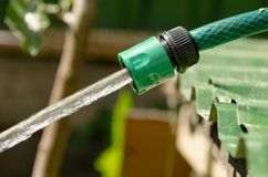 Garden hose, the water pressure Stock Photo