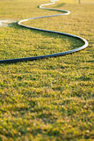 Garden Hose. On wet grass Royalty Free Stock Photography