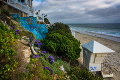 Garden and house above the beach, in Laguna Beach  Stock Photography