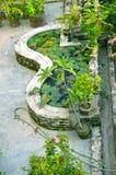 Garden in house Royalty Free Stock Photos
