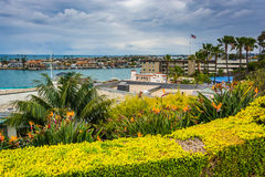 Garden and houses overlooking Newport Beach royalty free stock image