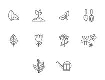Garden icons. Flower Icons for Pattern with White Background Royalty Free Stock Photography