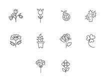 Garden icons. Flower Icons for Pattern with White Background Royalty Free Stock Images