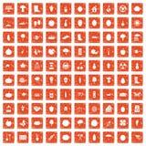 100 garden icons set grunge orange. 100 garden icons set in grunge style orange color isolated on white background vector illustration Stock Photography