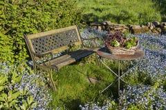 Garden idyll with garden bench Stock Images