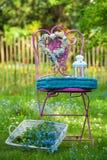 Garden idyll Royalty Free Stock Photography