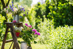 Garden idyll. With ladder and colorful watering cans royalty free stock image
